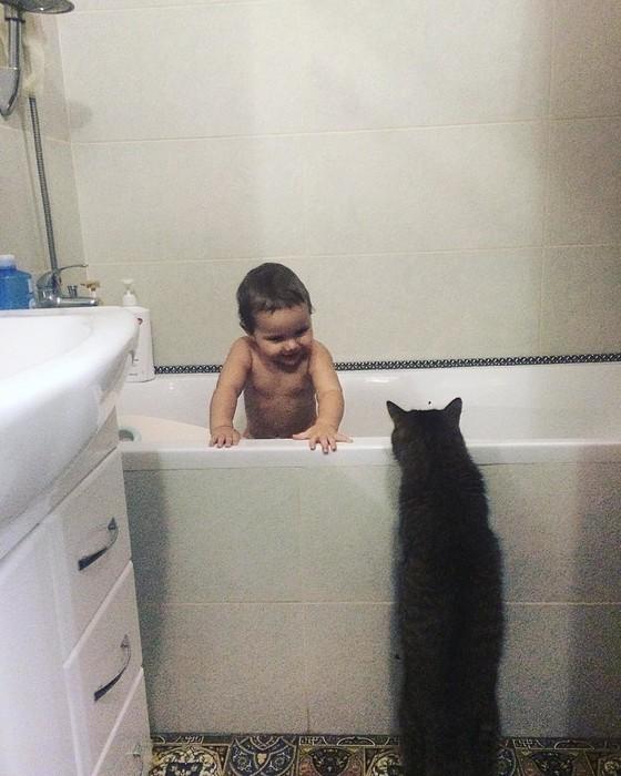 Младенцы и кошки: 25 фото, градус милоты в которых зашкаливает