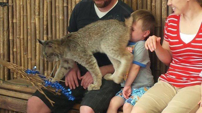 Дети в зоопарке: 12 кадров, которые заставят вас плакать от смеха