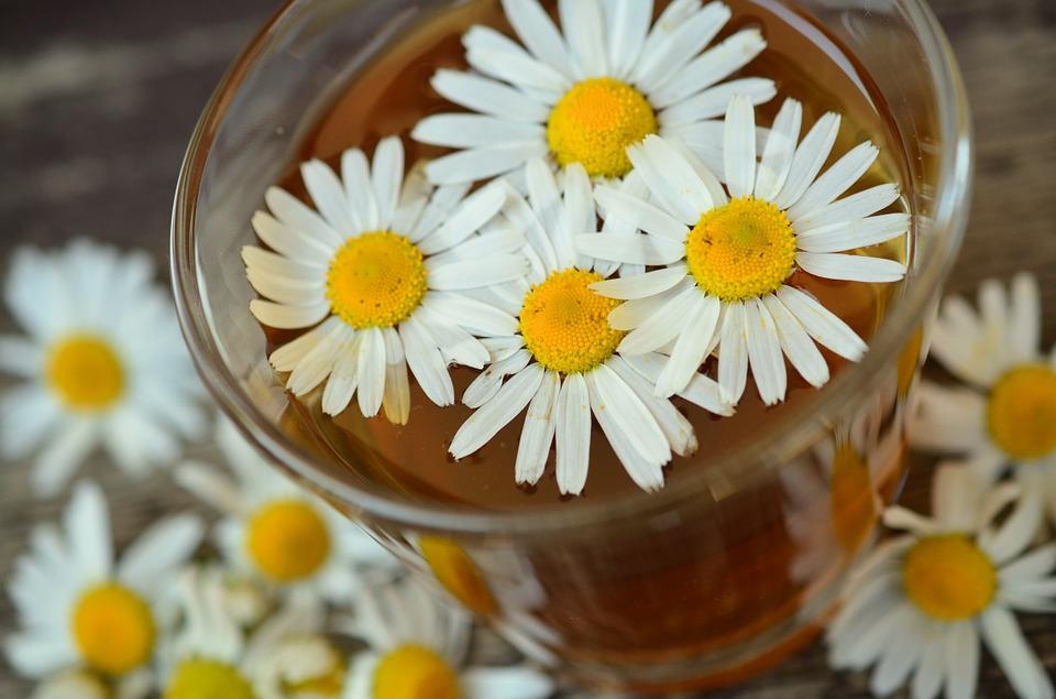 15 продуктов, которые помогут пережить токсикоз