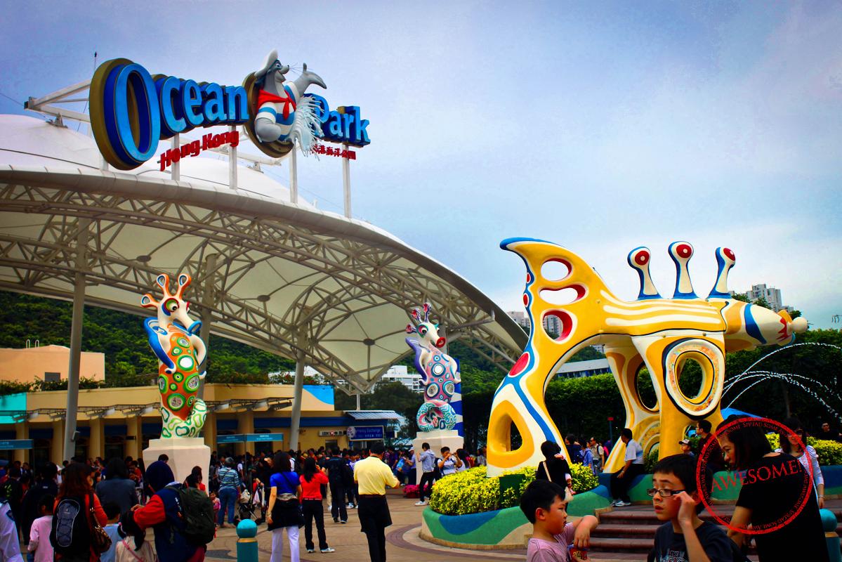 ТОП-8 самых крутых парков развлечений, которые поражают даже взрослых